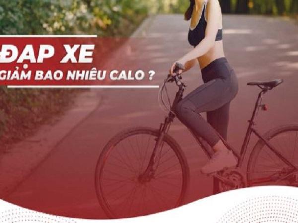 Đạp xe giảm bao nhiêu calo?