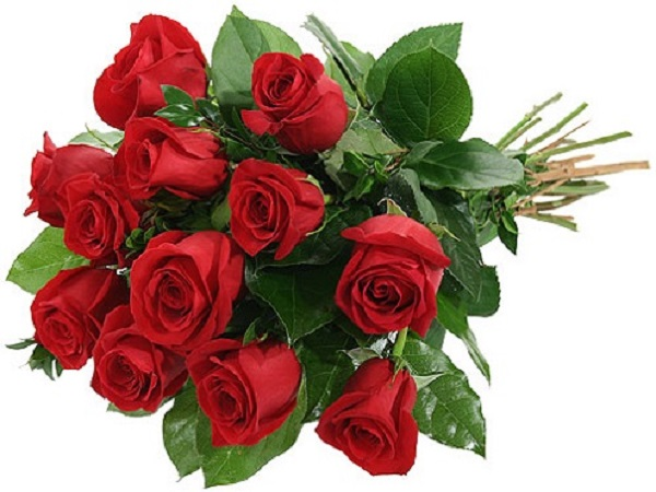 Mơ thấy hoa hồng có điềm báo gì và đánh số nào trúng?